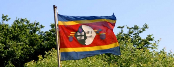 Swaziland Trade Union Movement